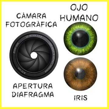 el DIAFRAGMA en FOTOGRAFIA COMPARACIÓN de la apertura del  diafragma fotográfico con el iris del ojo humano