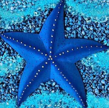 estrella de mar color indicus